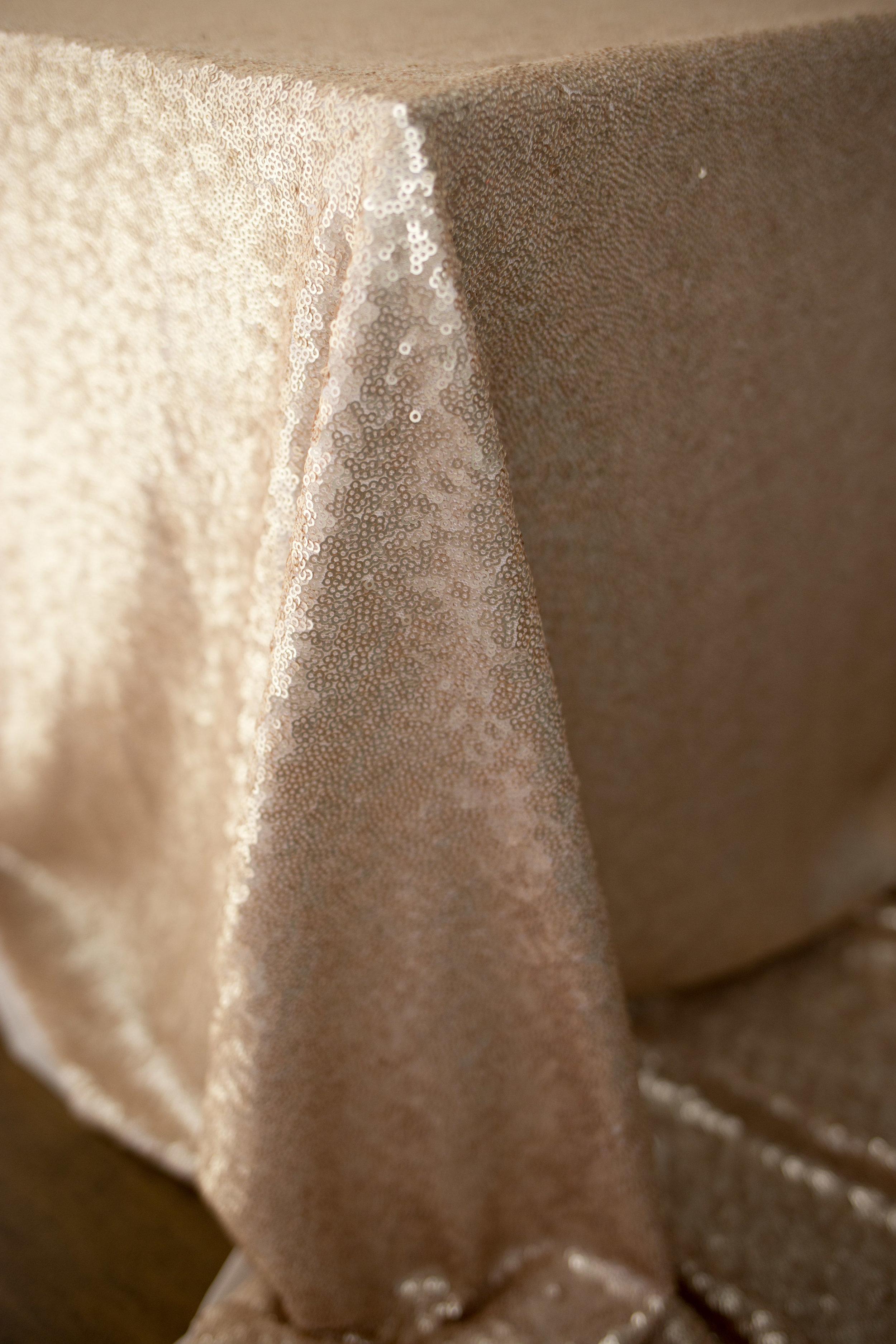Blush Matte Sequin 2.jpg