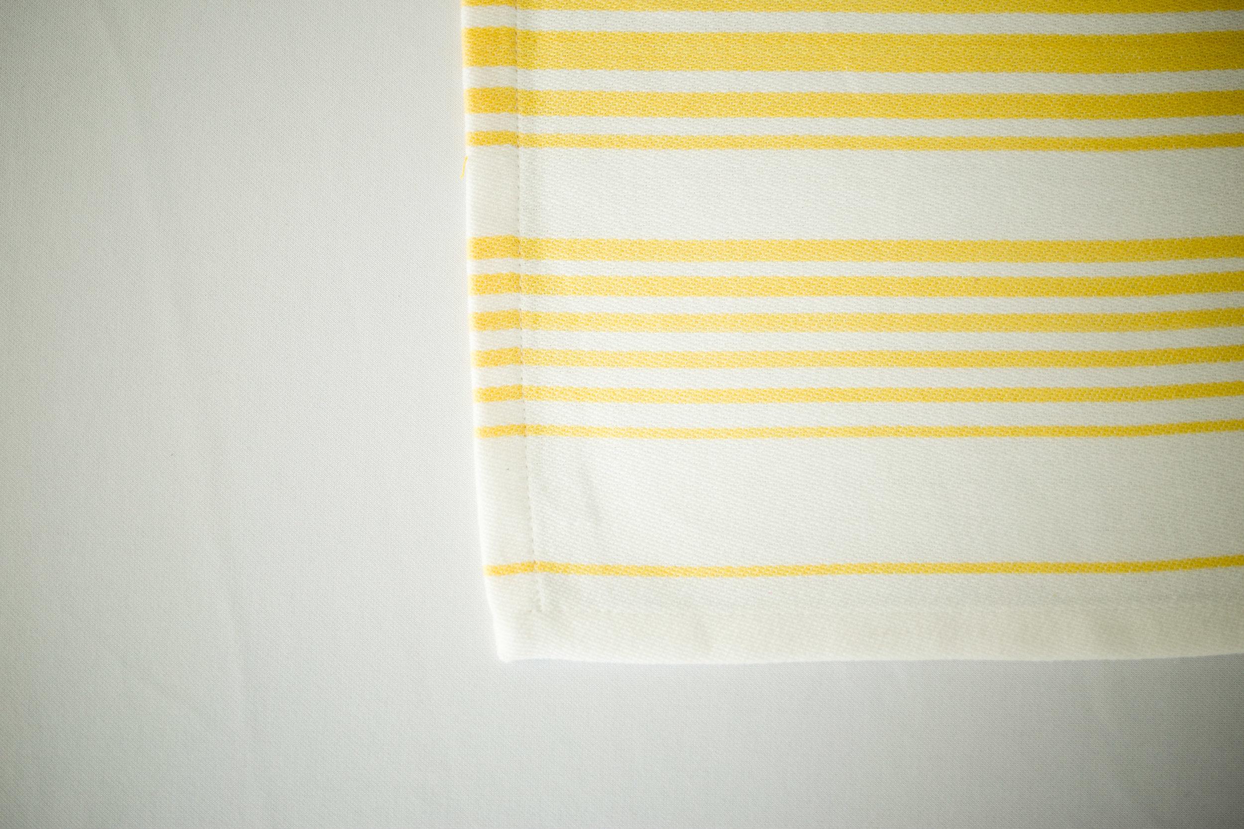 Meyer Stripe 1.jpg