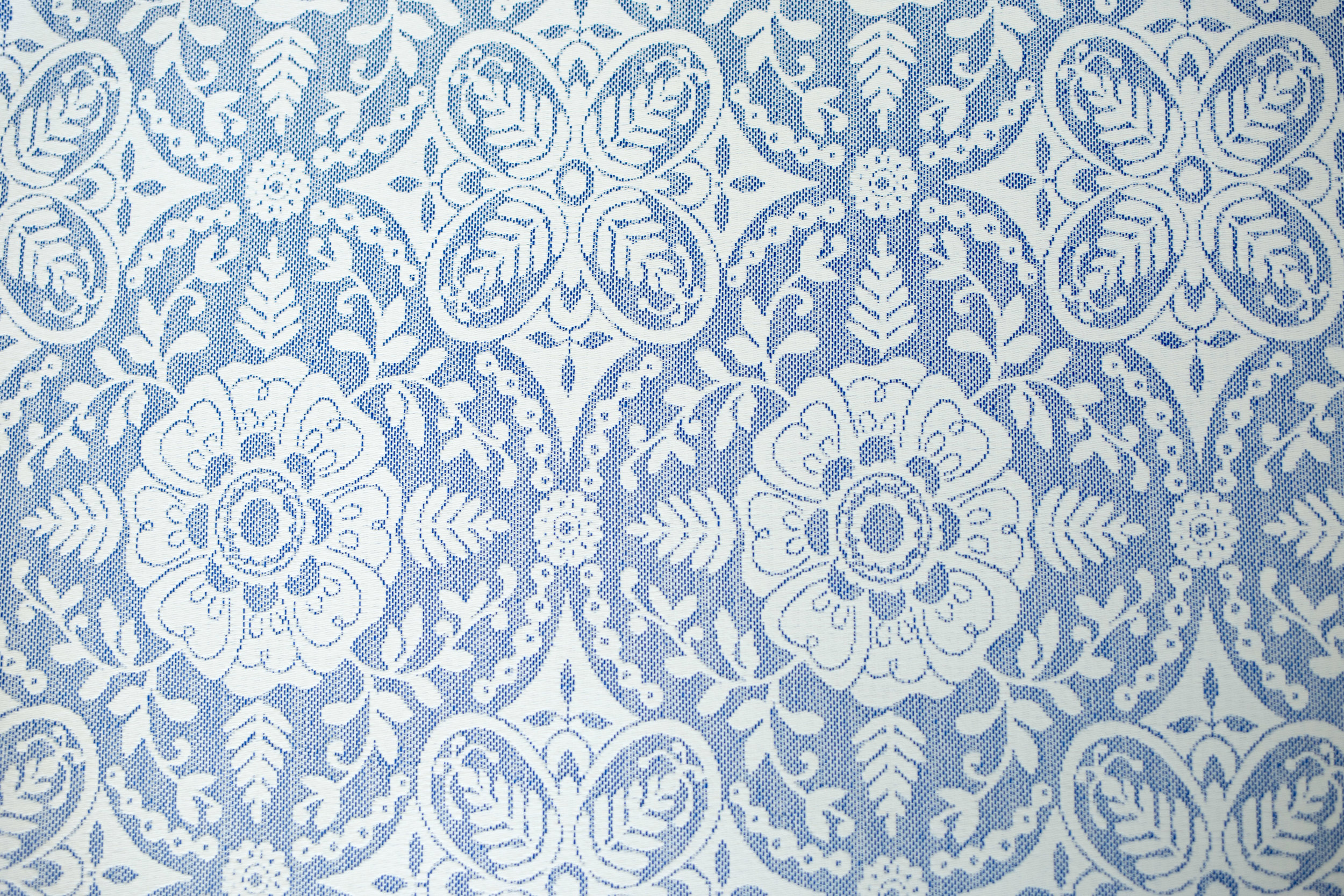 IMG_4887.jpg blue victorian.jpg
