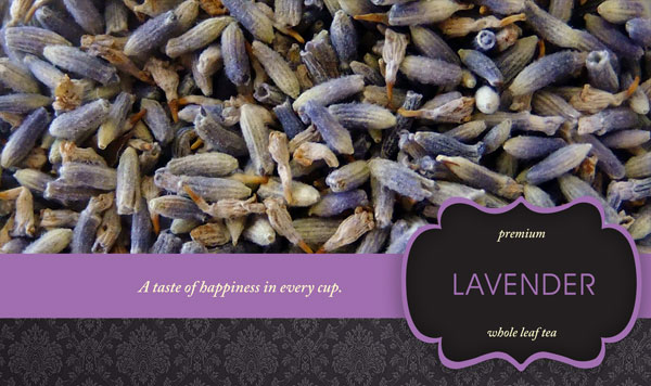 Lavender-copy.jpg