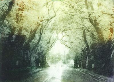 artwork-Tunnel_Indigo_and_Vanilla-0.0.400.jpg
