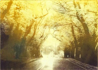 artwork-Tunnel_spring_Yellow-0.0.400.jpg