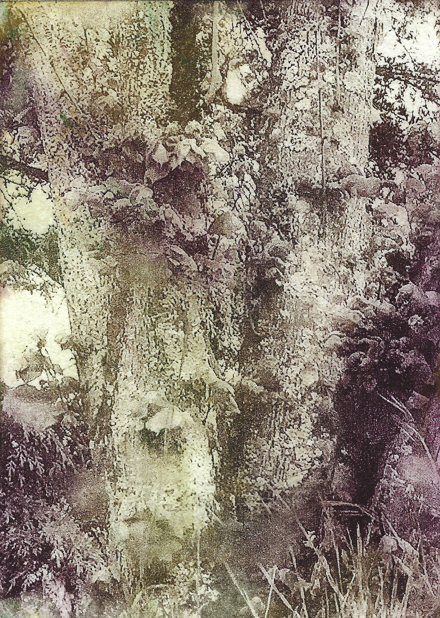 Flora_moss and brown.jpg