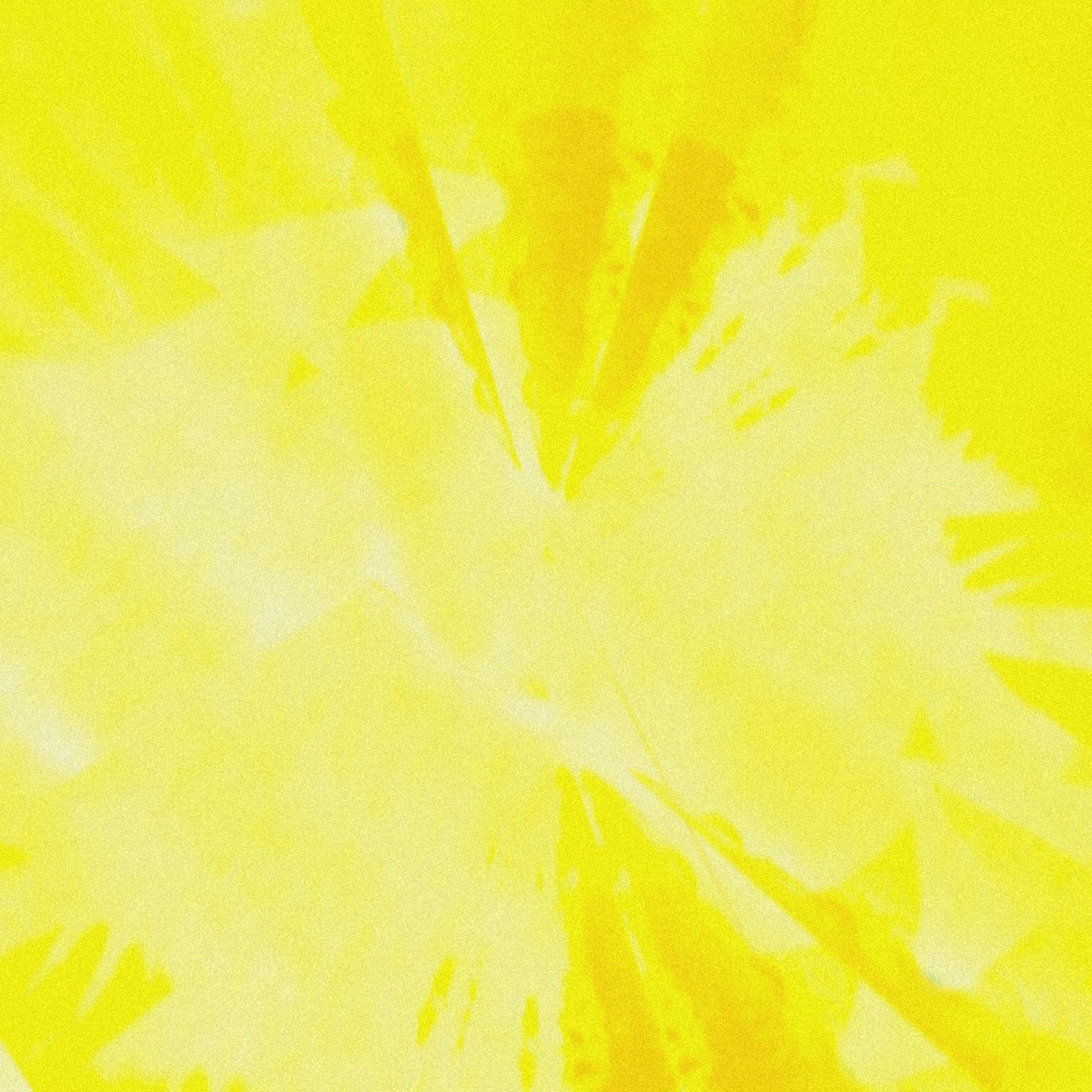 rays - seventhgaze