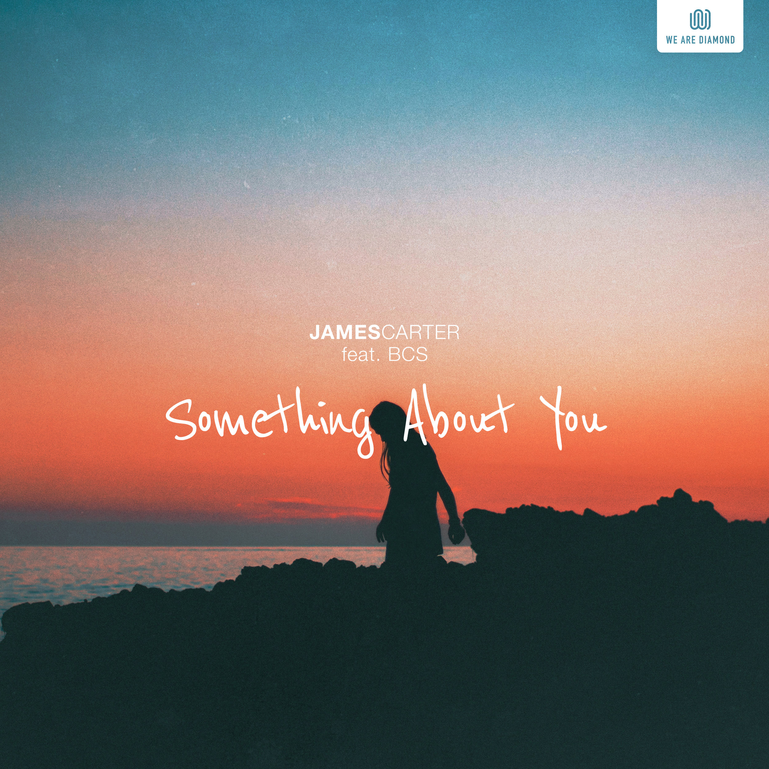 Something About You (feat. BCS)
