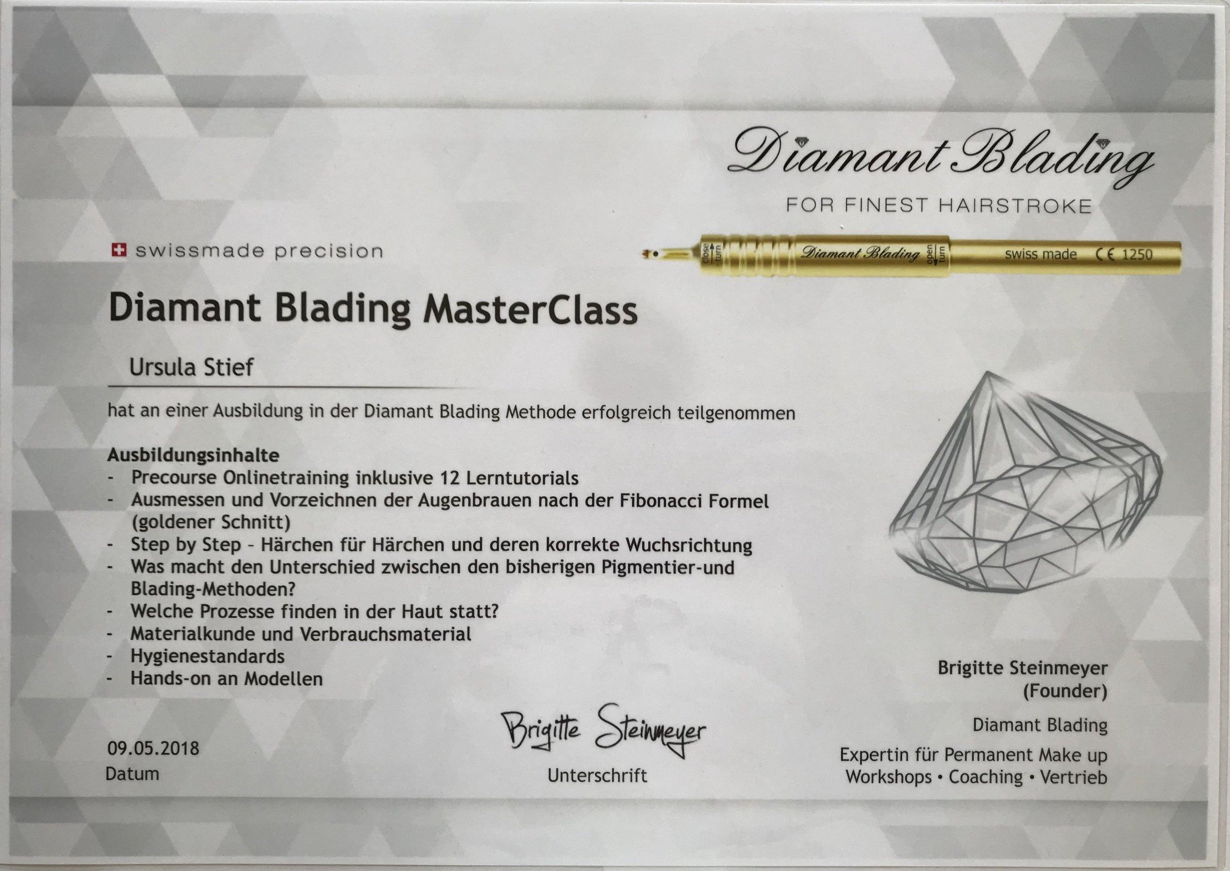 Diamantblading Zertifikat Stief