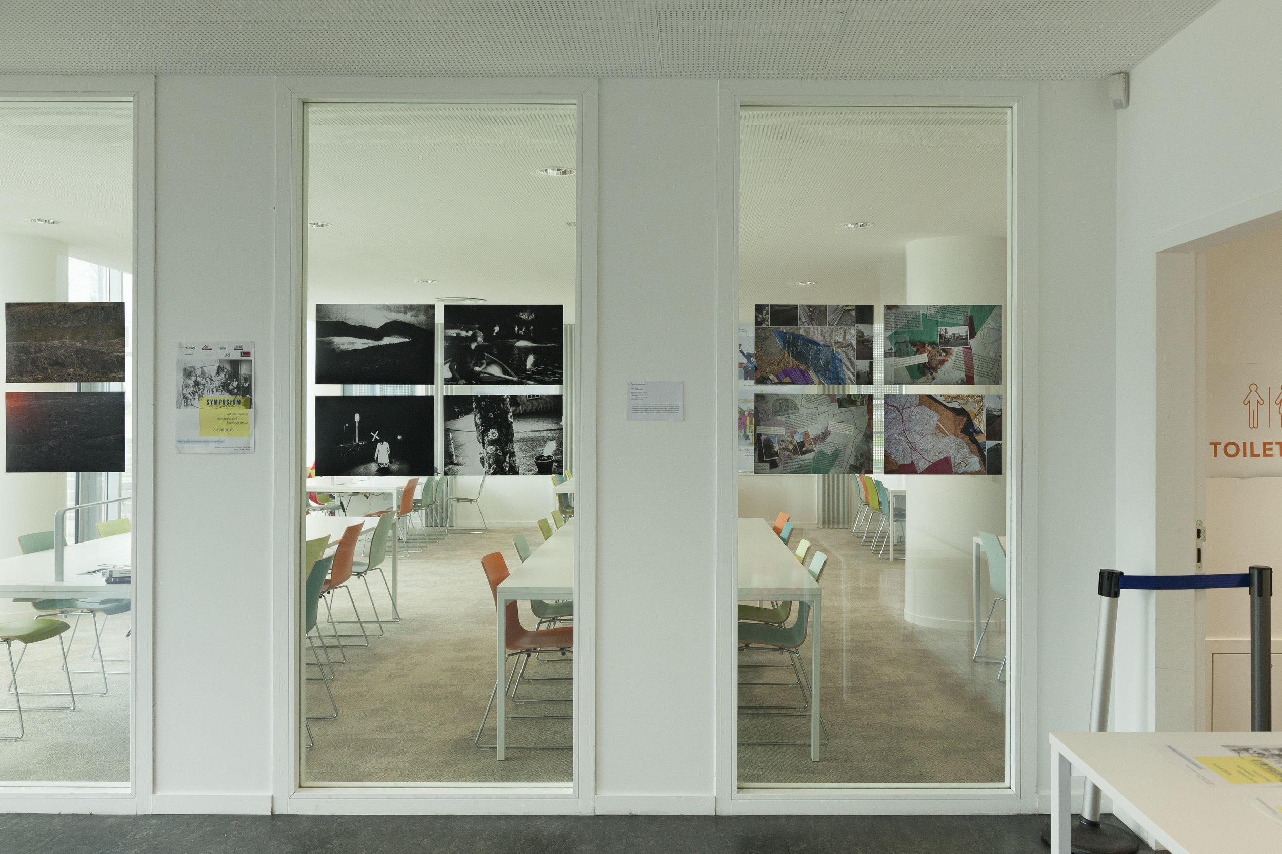 Exposition à la bibliothèque Paris 13, Villetaneuse.  Dans le cadre du CIRBE.  En collaboration avec Vanessa Buhrig, Christine Delors-Monberger, Florence Cardenti, Laure Pubert et Cécile Offroy.