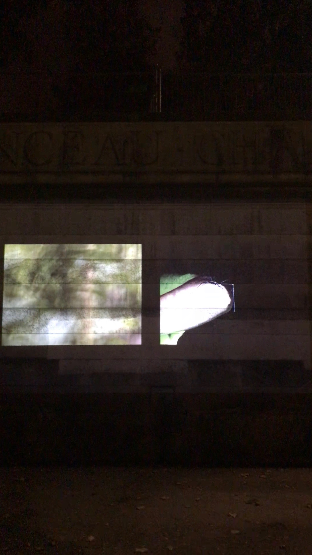 Projection Nuit Blanche 2018012.jpg