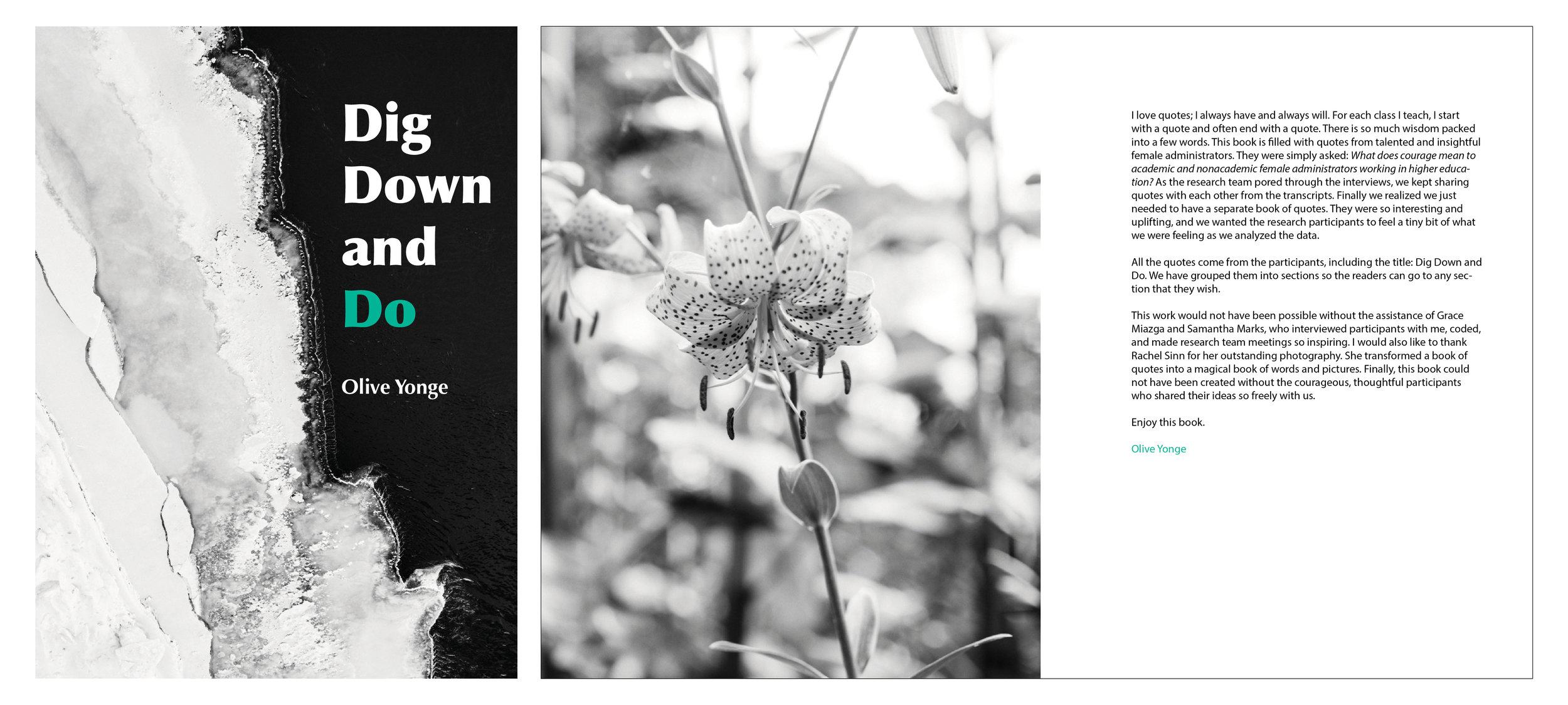 digdown1.jpg