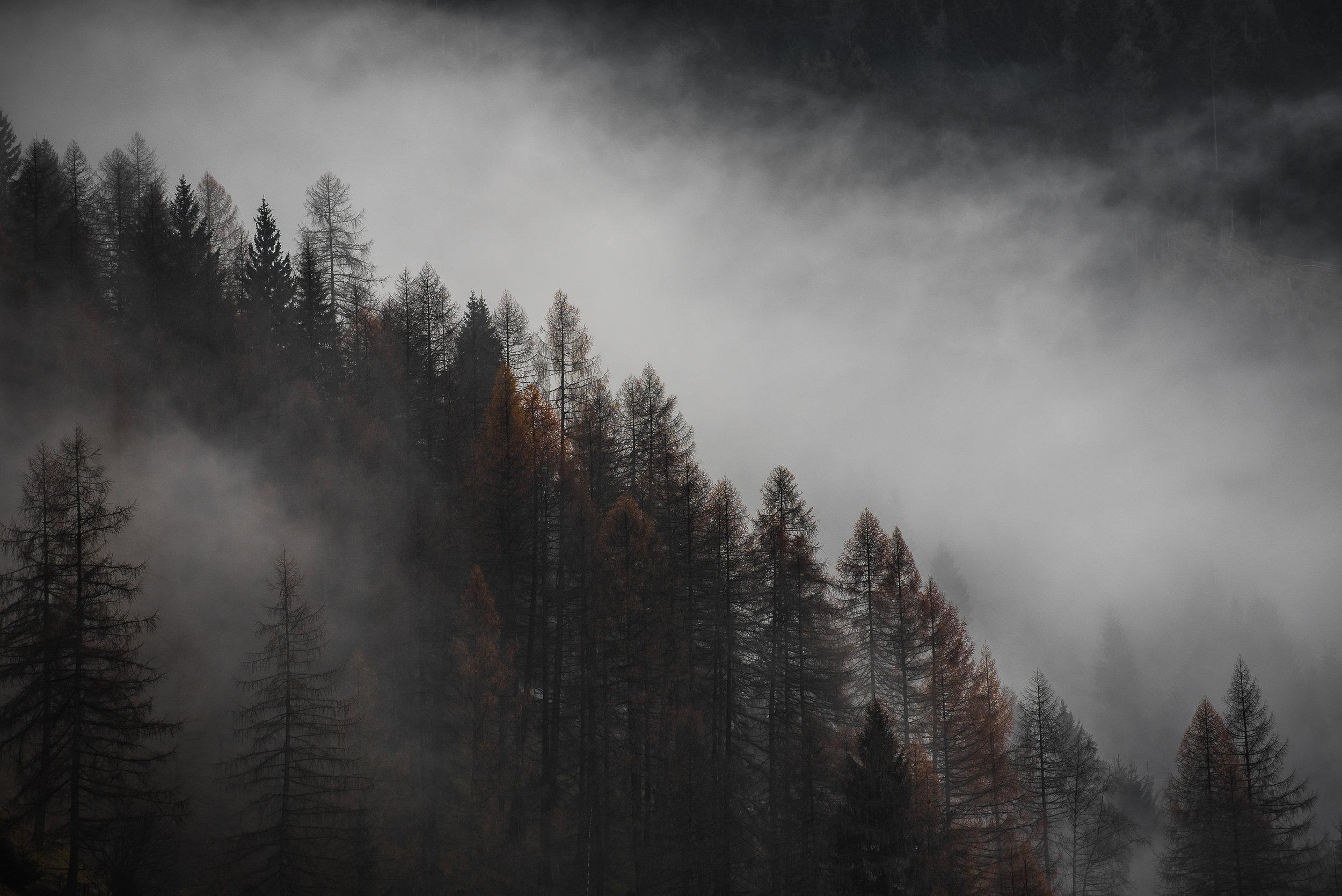 Landscape_Austria_renrob©.jpg