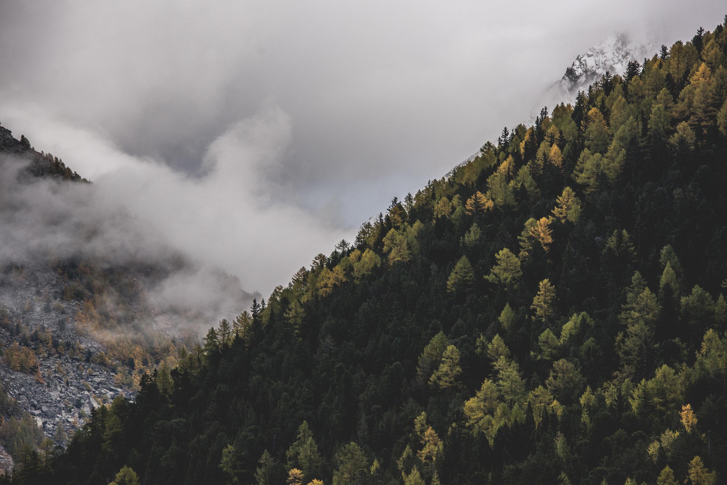 Switzerland_Mountain_renrob©-3.jpg