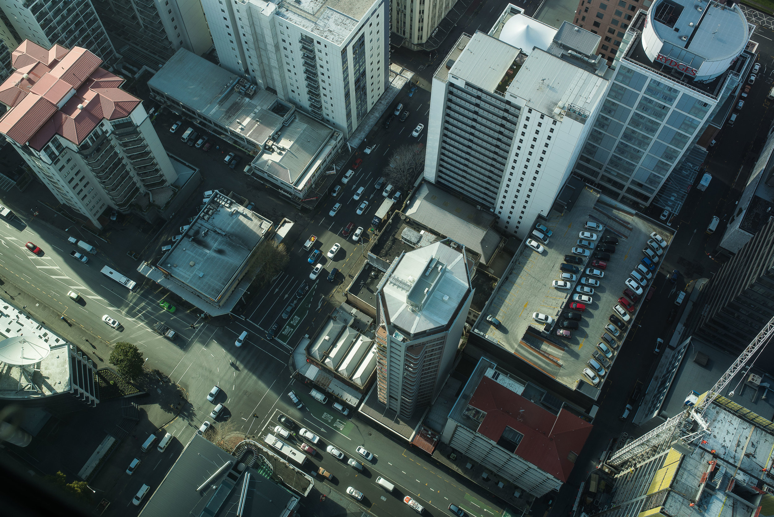 SkyTower_View_Street_renrob©.jpg