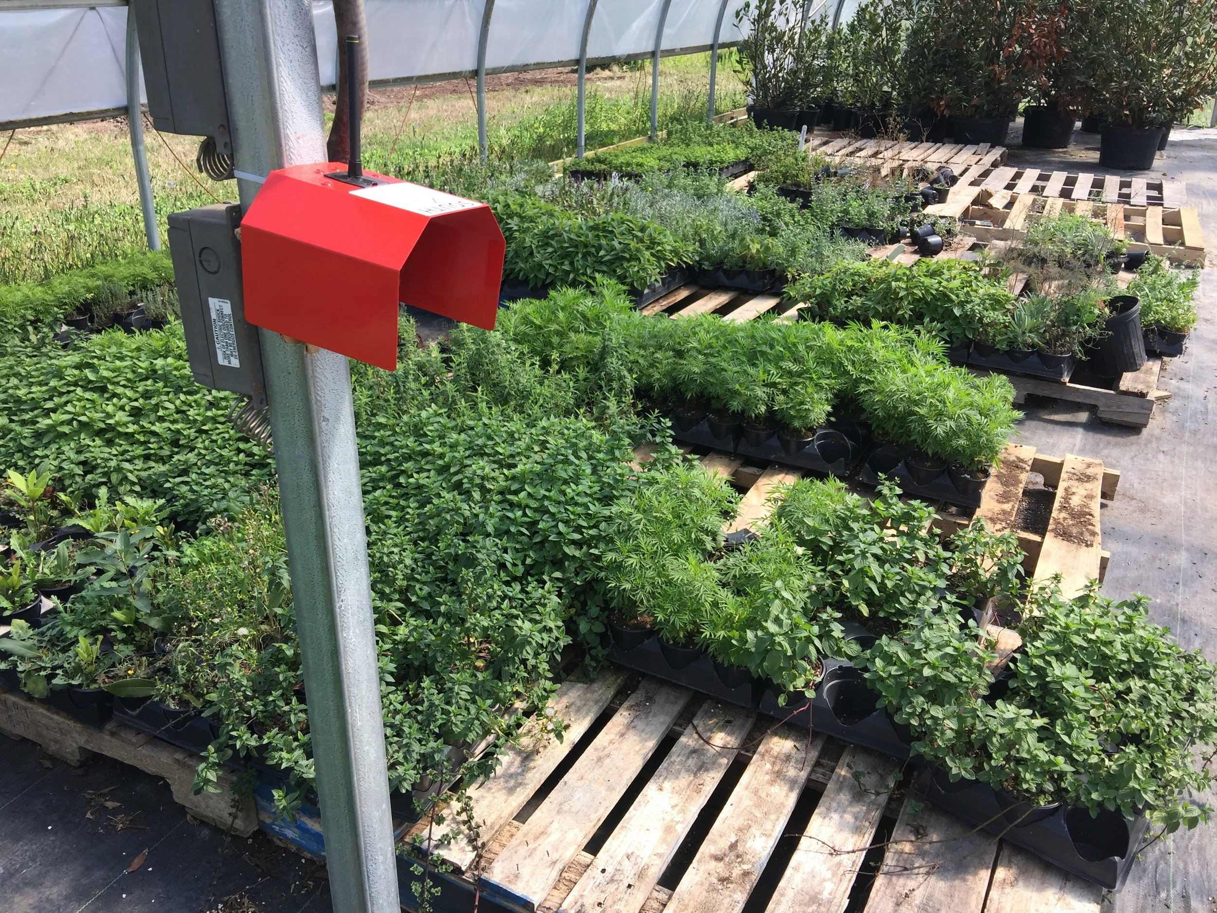This sensor monitors climate conditions inside a greenhouse.