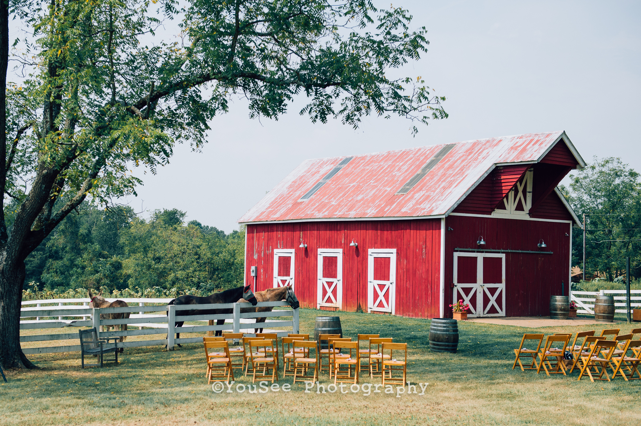 wedding_westwoodfarm_orange_virginia (86)