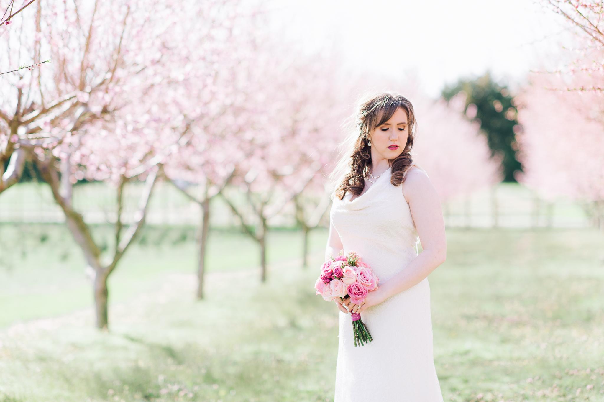 springwedding_cherryblossoms_virginiaphotographer_youseephotography_styledshoot (513).jpg