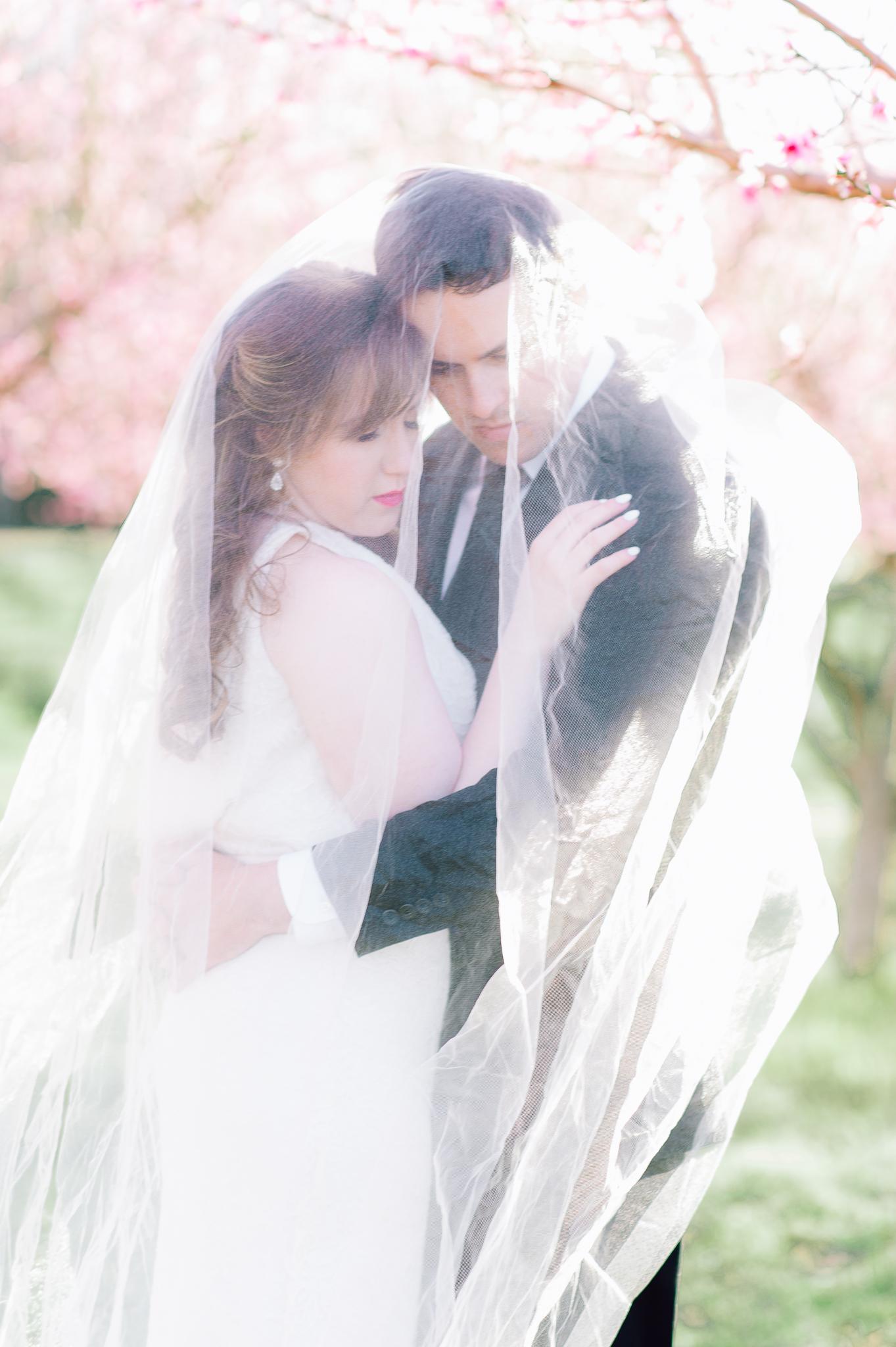springwedding_cherryblossoms_virginiaphotographer_youseephotography_styledshoot (530).jpg
