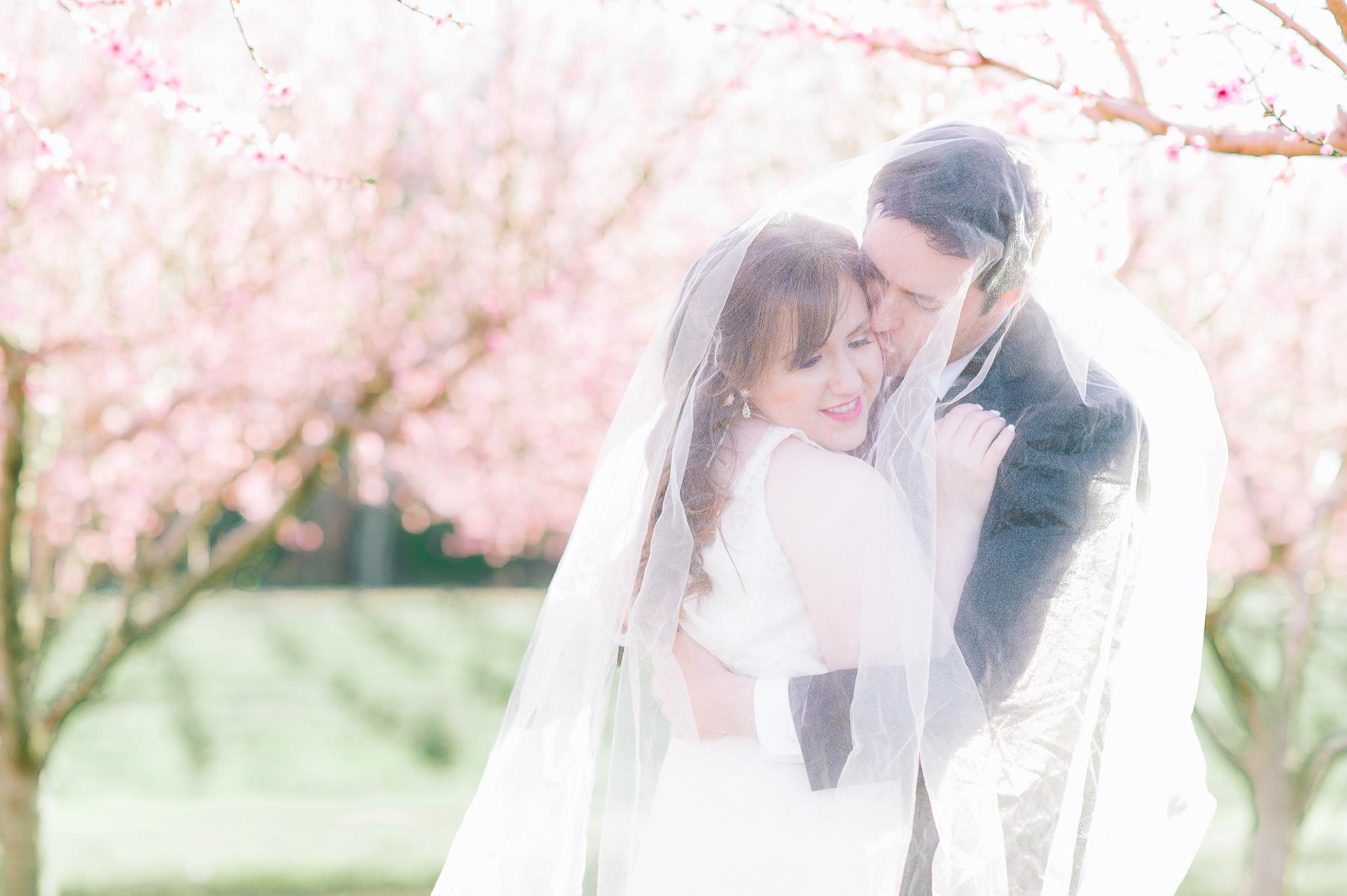 springwedding_cherryblossoms_virginiaphotographer_youseephotography_styledshoot (534).jpg