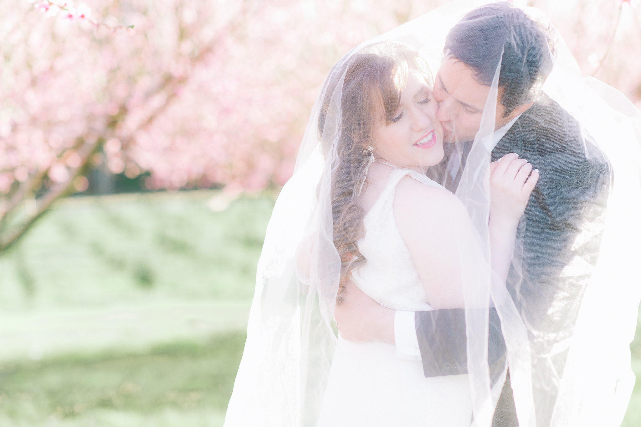 springwedding_cherryblossoms_virginiaphotographer_youseephotography_styledshoot (535).jpg