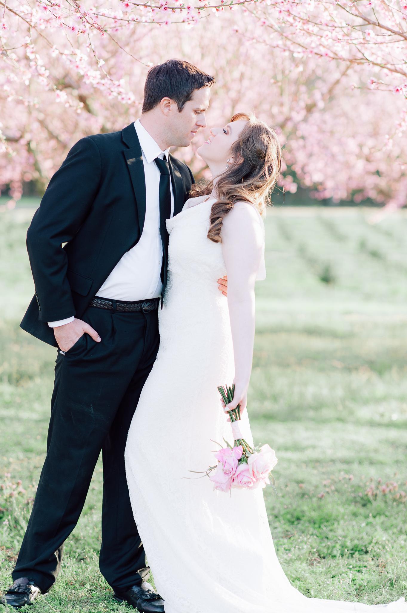 springwedding_cherryblossoms_virginiaphotographer_youseephotography_styledshoot (567).jpg