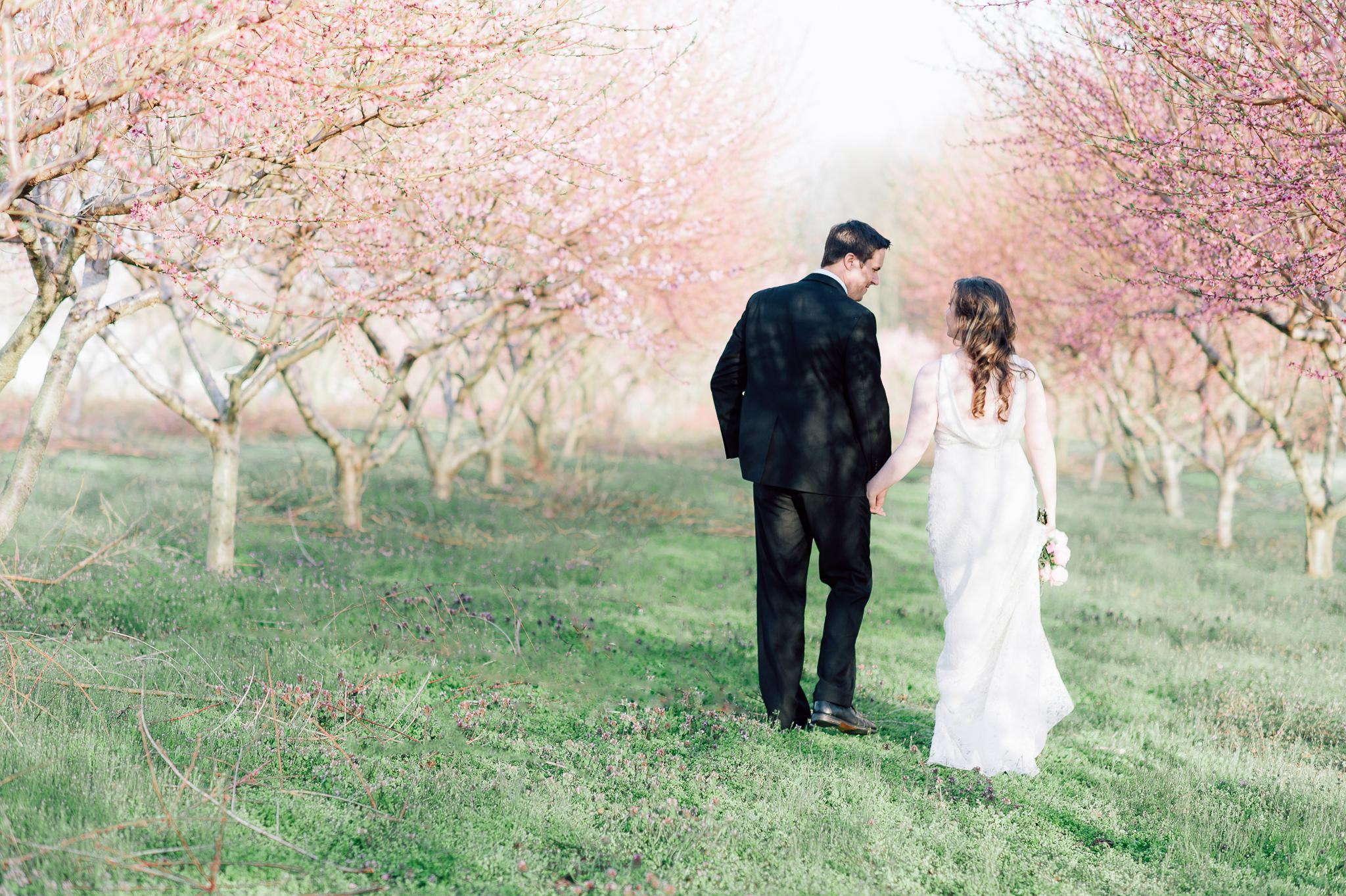 springwedding_cherryblossoms_virginiaphotographer_youseephotography_styledshoot (573).jpg