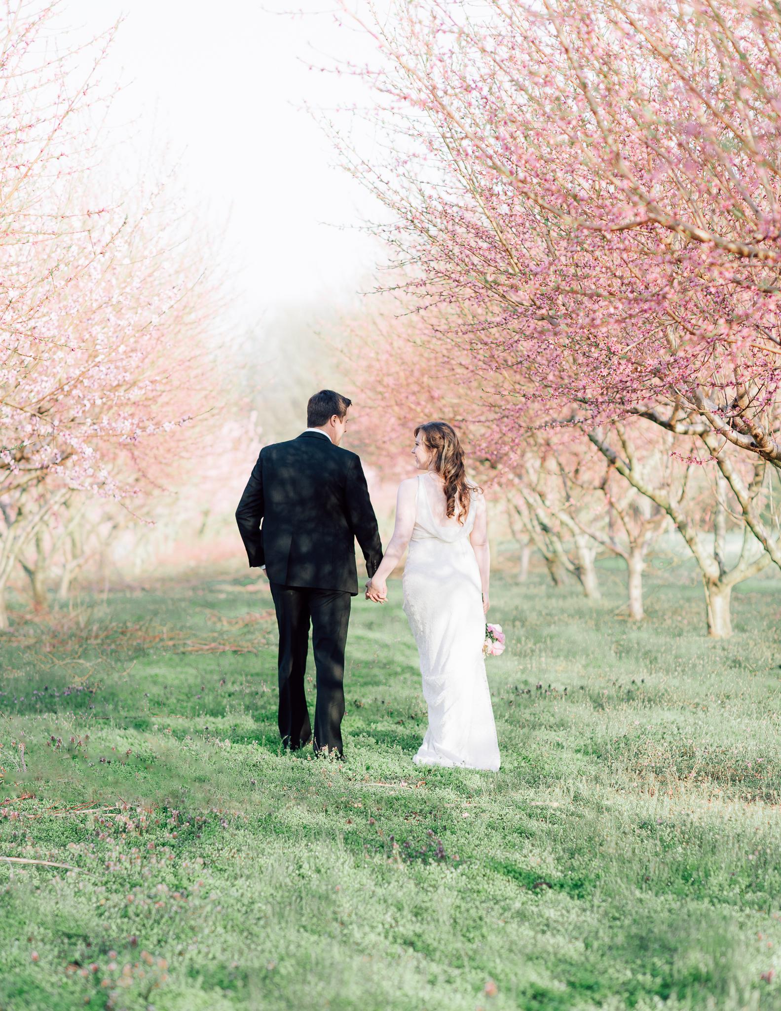 springwedding_cherryblossoms_virginiaphotographer_youseephotography_styledshoot (575).jpg