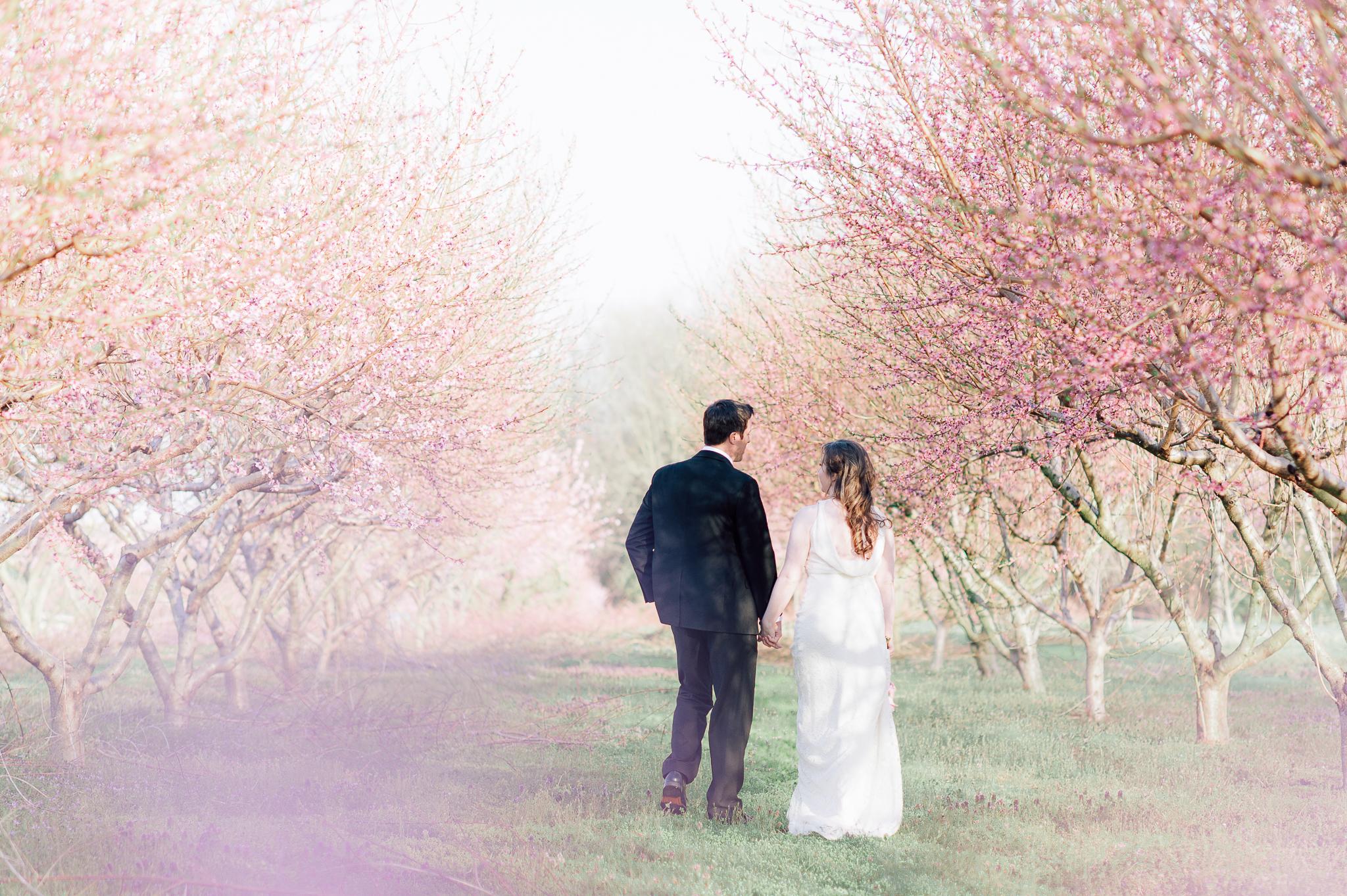 springwedding_cherryblossoms_virginiaphotographer_youseephotography_styledshoot (576).jpg