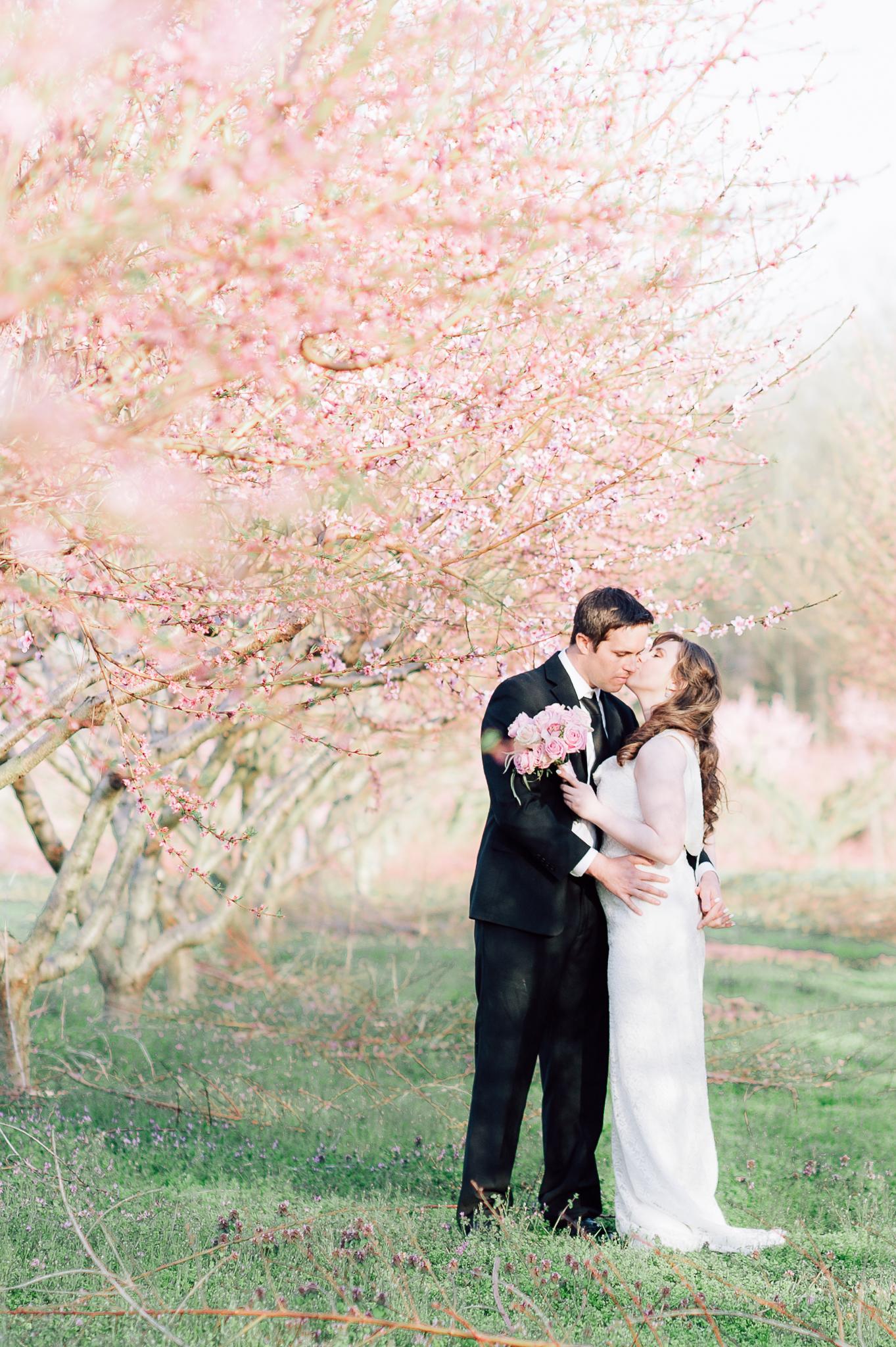 springwedding_cherryblossoms_virginiaphotographer_youseephotography_styledshoot (582).jpg