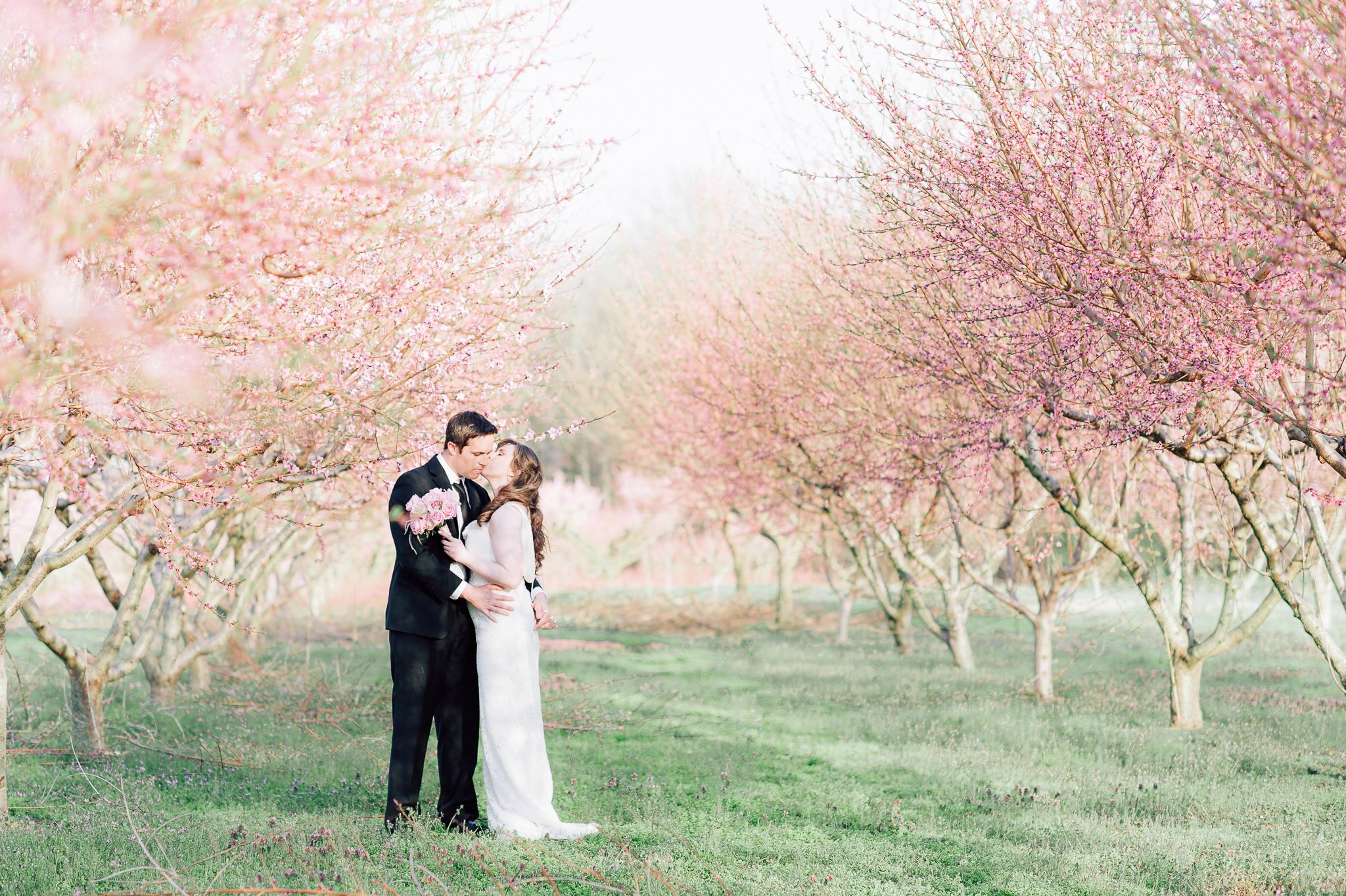 springwedding_cherryblossoms_virginiaphotographer_youseephotography_styledshoot (581).jpg