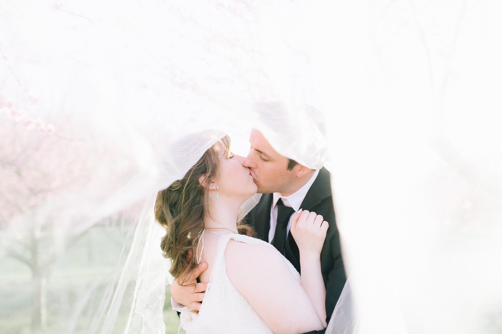 springwedding_cherryblossoms_virginiaphotographer_youseephotography_styledshoot (605).jpg