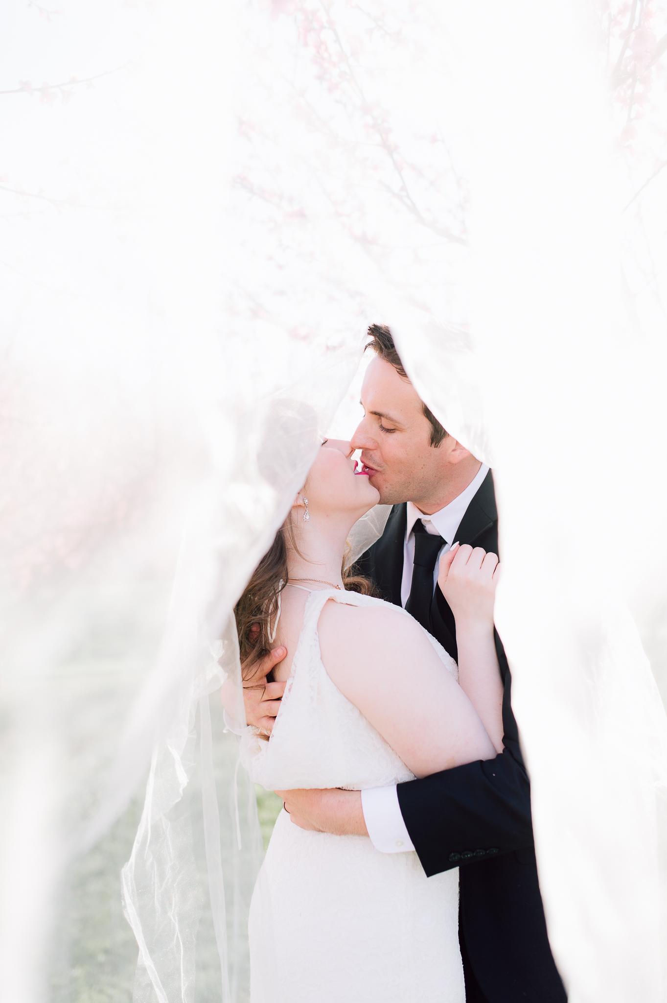 springwedding_cherryblossoms_virginiaphotographer_youseephotography_styledshoot (608).jpg