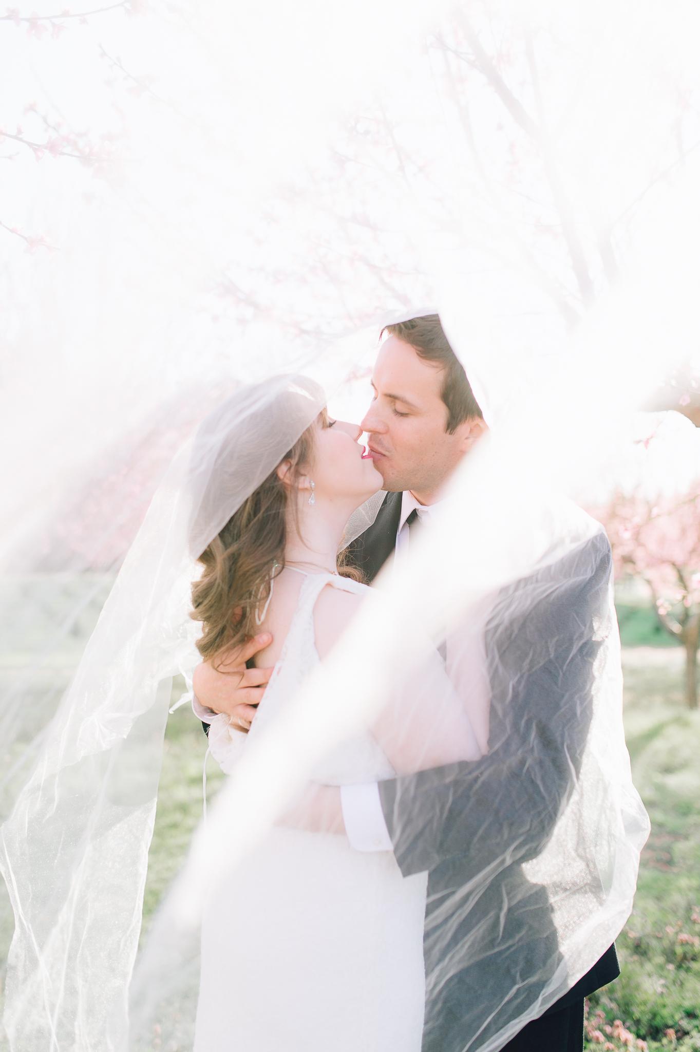 springwedding_cherryblossoms_virginiaphotographer_youseephotography_styledshoot (609).jpg