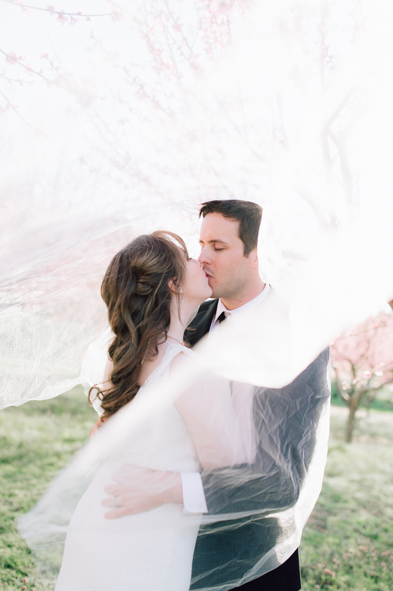 springwedding_cherryblossoms_virginiaphotographer_youseephotography_styledshoot (610).jpg