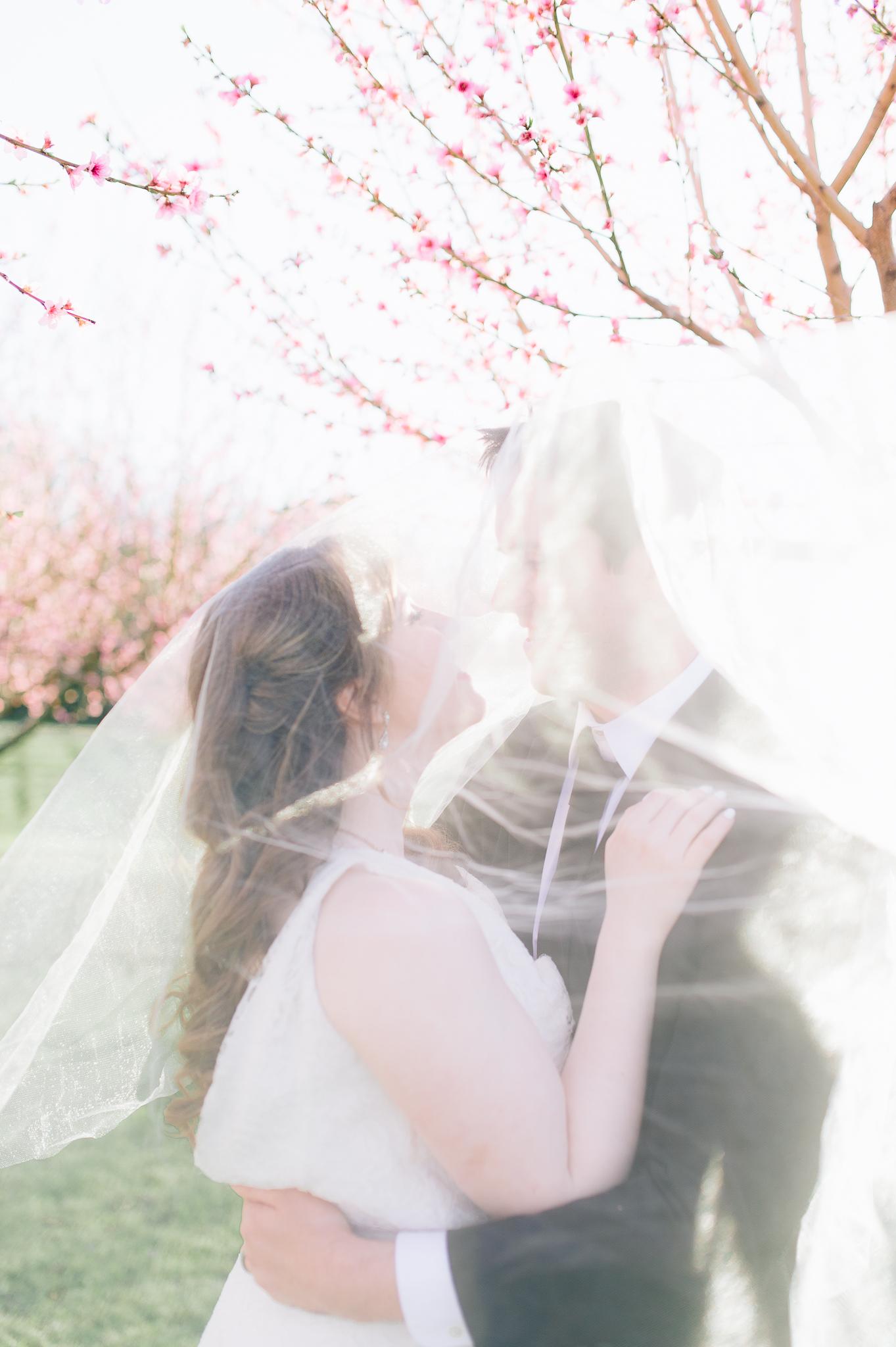 springwedding_cherryblossoms_virginiaphotographer_youseephotography_styledshoot (612).jpg