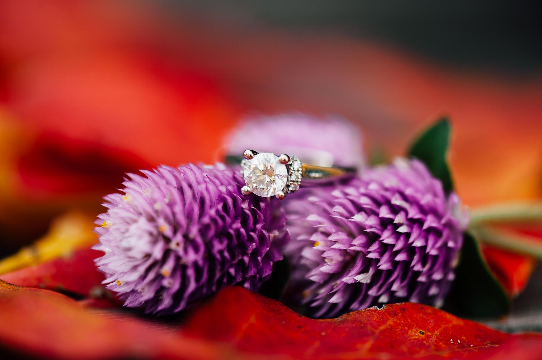 Fall_engagement_maymont_virginiawedding_youseephotography_CatherineCody (41).jpg