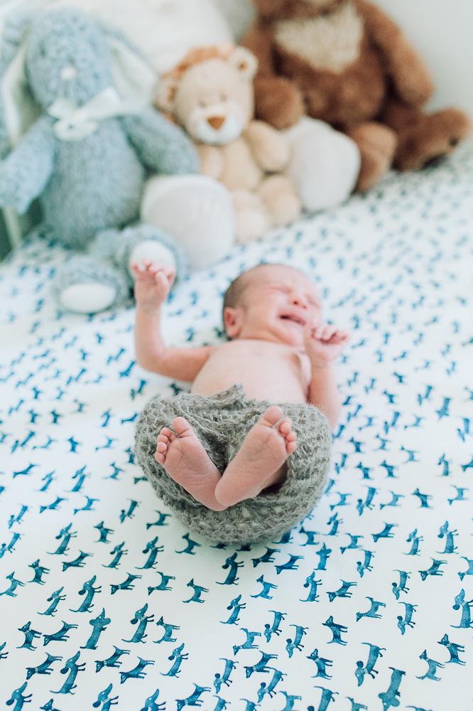 newborn_fredericksburgphotographer_youseephotography_babyNicko (25).JPG