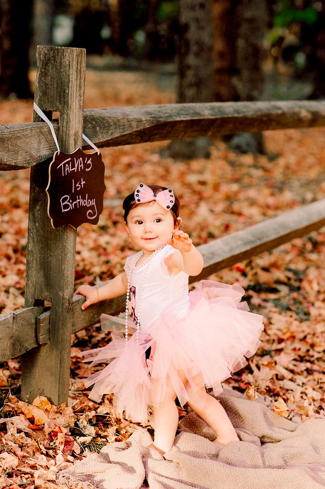 CakeSmash_Fall_FredericksburgPhotographer_youseephotography_babyTalya (21).JPG