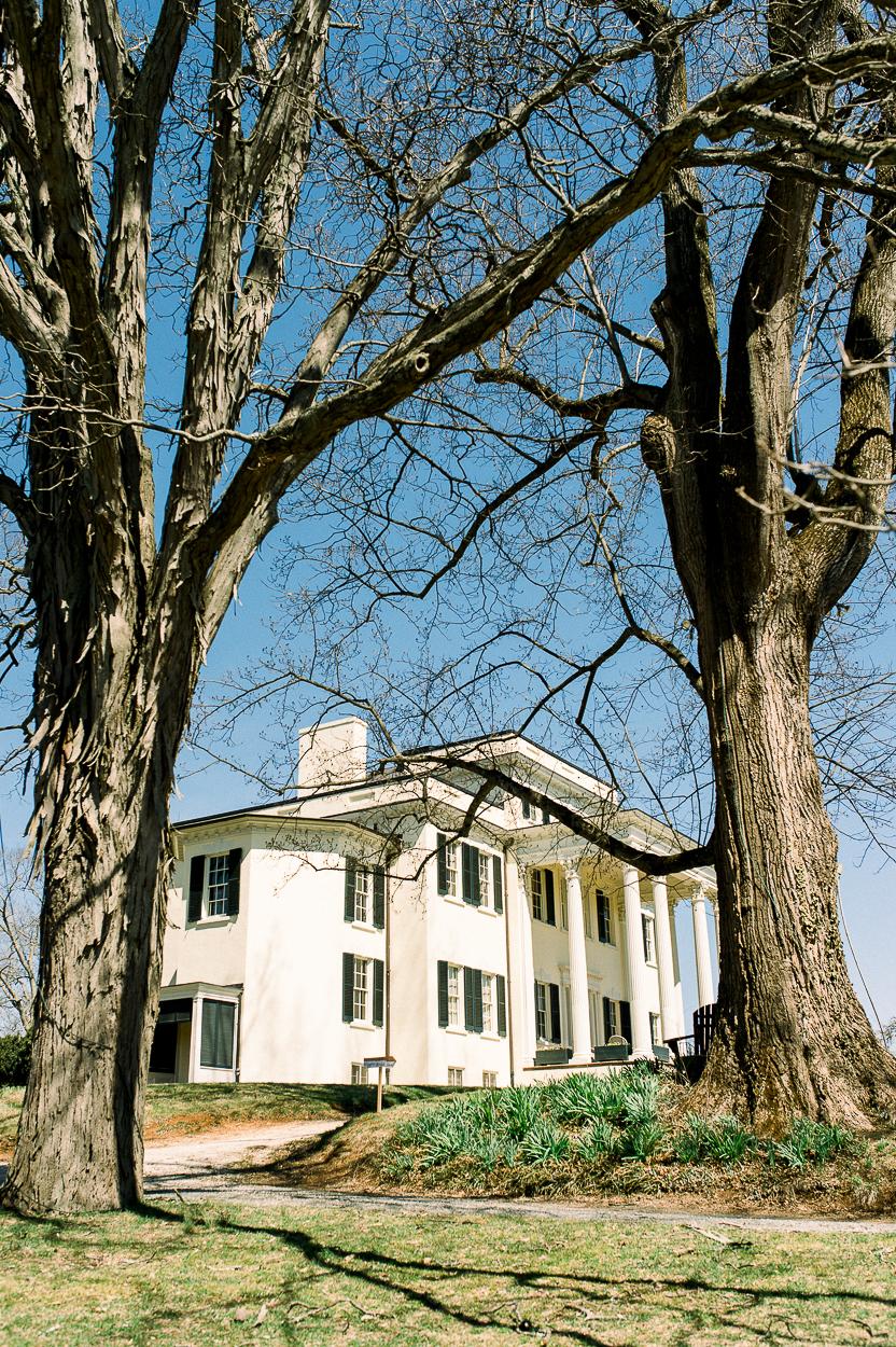 youseephotography_SpringWedding_Oatlands_Leesburg_VirginiaWedding_styledshoot (14).JPG