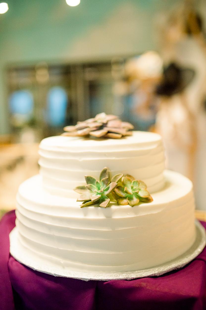 BigCork_vineyard wedding_virginiaweddingphotographer_youseephotography_SarahJames (89).JPG