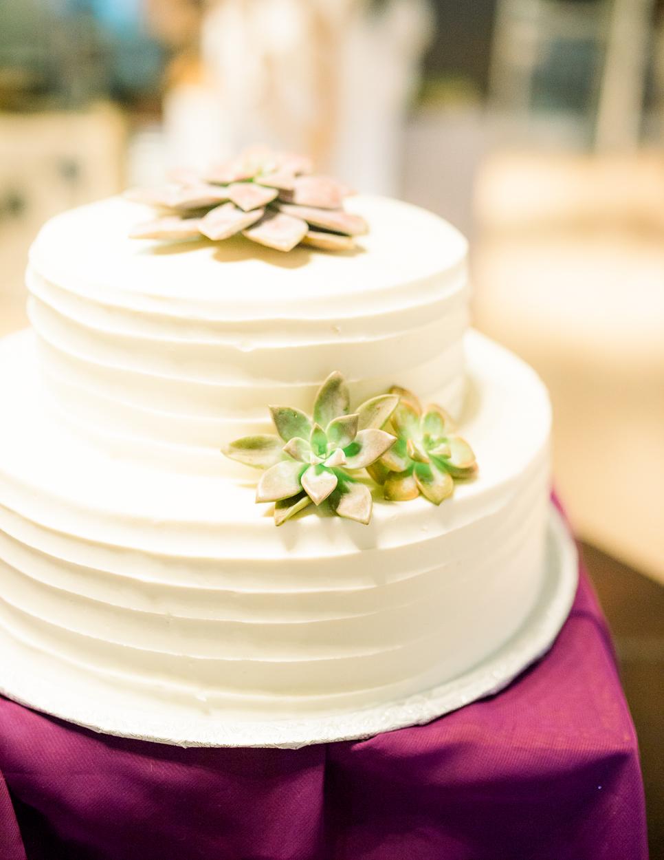 BigCork_vineyard wedding_virginiaweddingphotographer_youseephotography_SarahJames (90).JPG