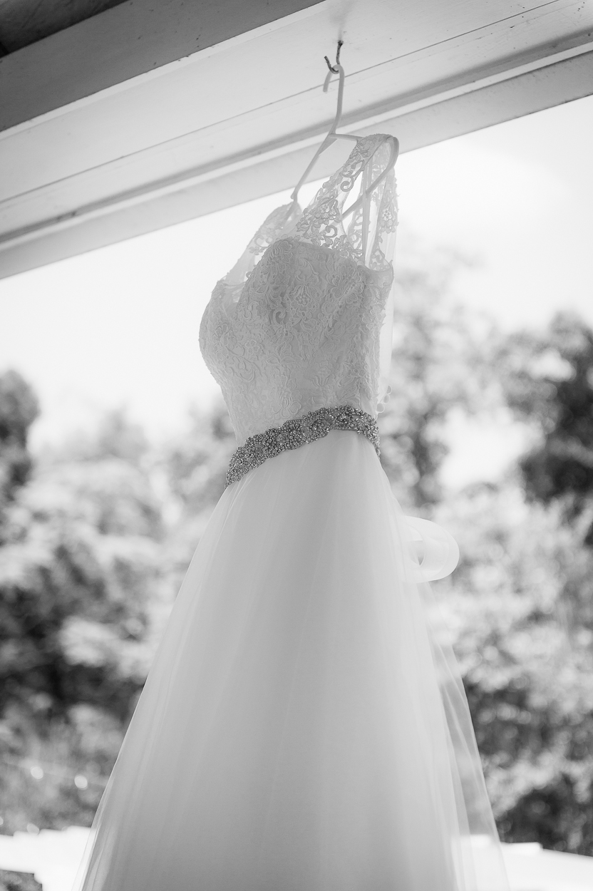 virginiawedding_vineyardwedding_LostCreekWinery_LeesburgWedding_youseephotography_Siegel (38).JPG