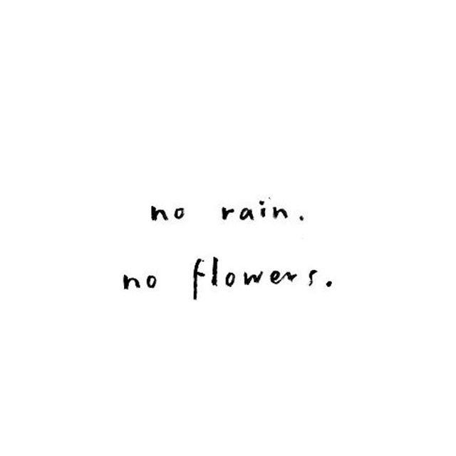 I love the rain!! #rain #flowers #warmth #growth #natureninja #yay #green
