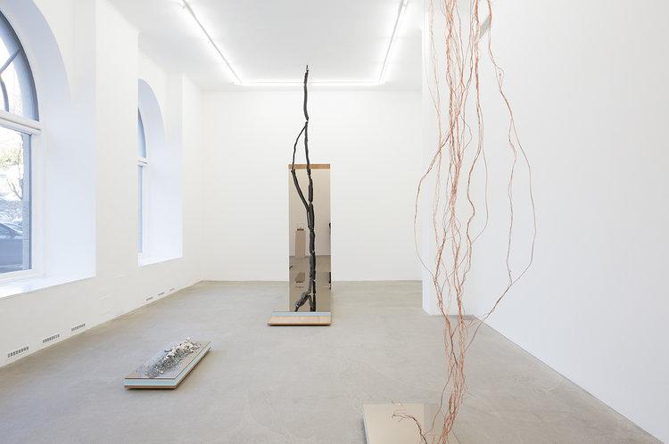 HannaLjungh-Hanna-Ljungh-Anatomyof-a-descent-Anatomy-ofadescent-Anna-Bohman-Gallery-AnnaBohmanGallery-1.jpg
