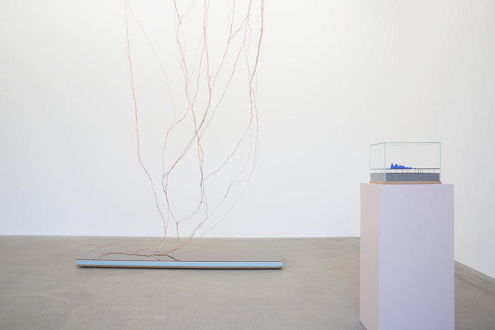 HannaLjungh-Hanna-Ljungh-Anatomyofadescent-Anatomy-of-a-descent-Anna-Bohman-Gallery-AnnaBohmanGallery-3.jpg