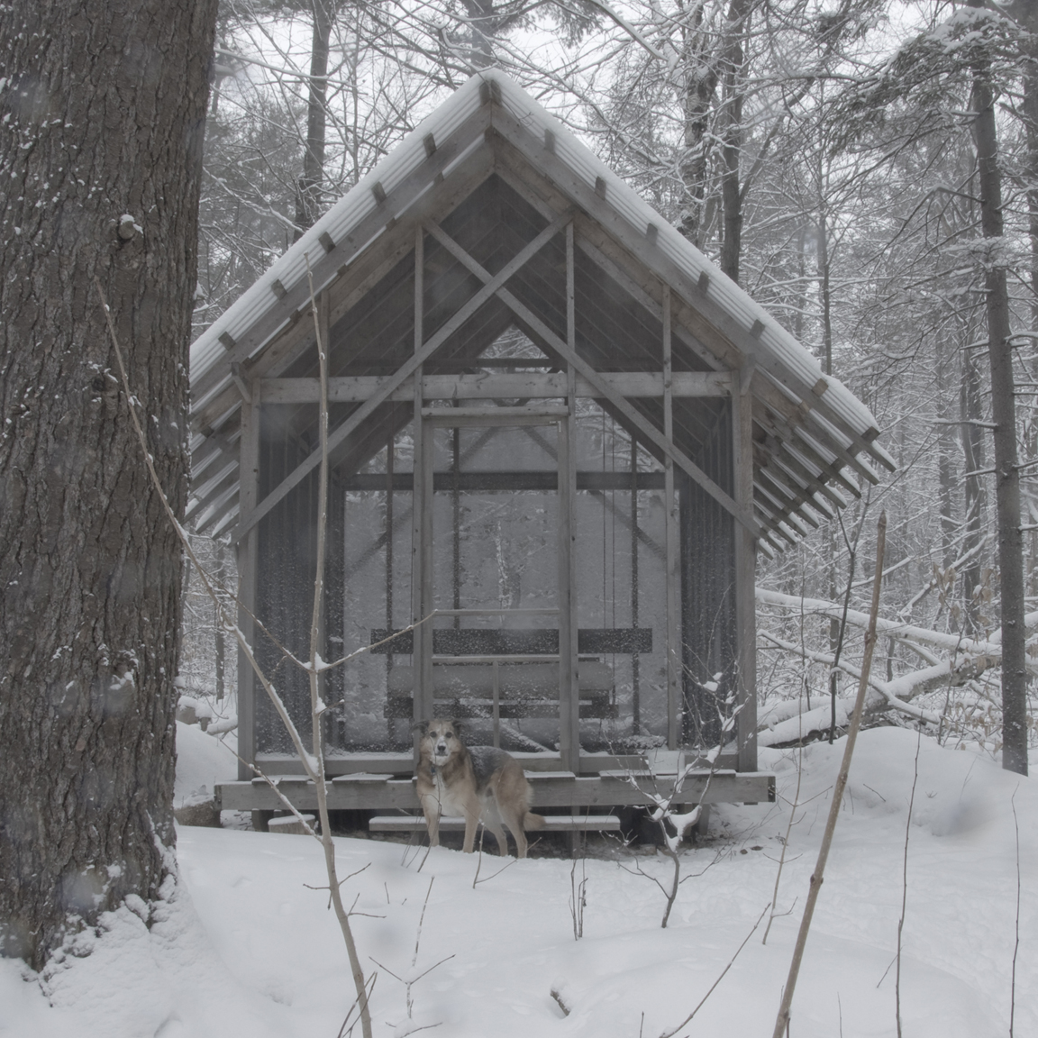 fernhouse in winter a.jpg