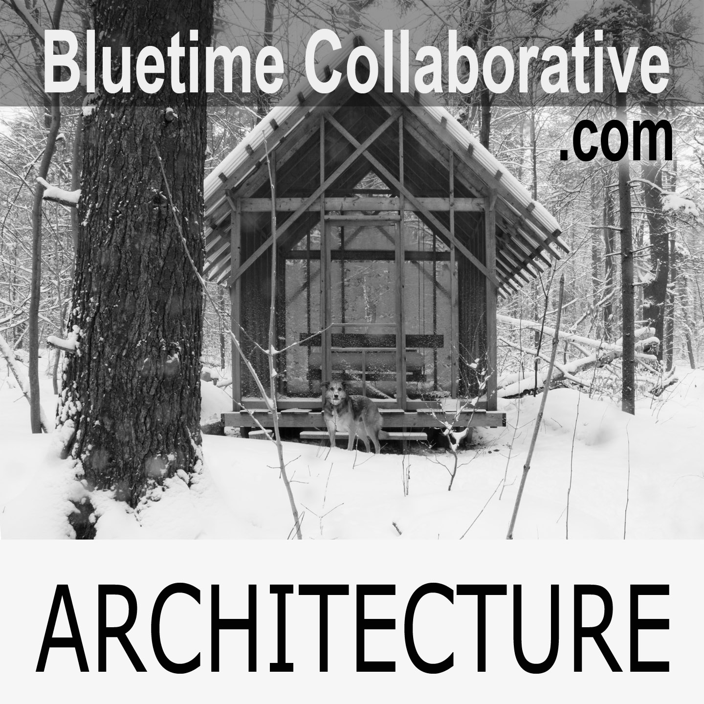 Bluetime-commons-ad copy.jpg