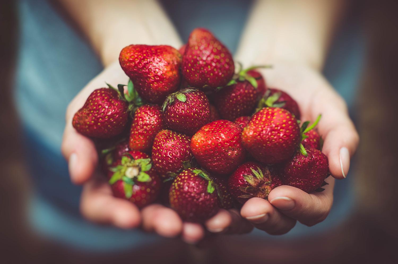 A handful of ripe succulent strawberries