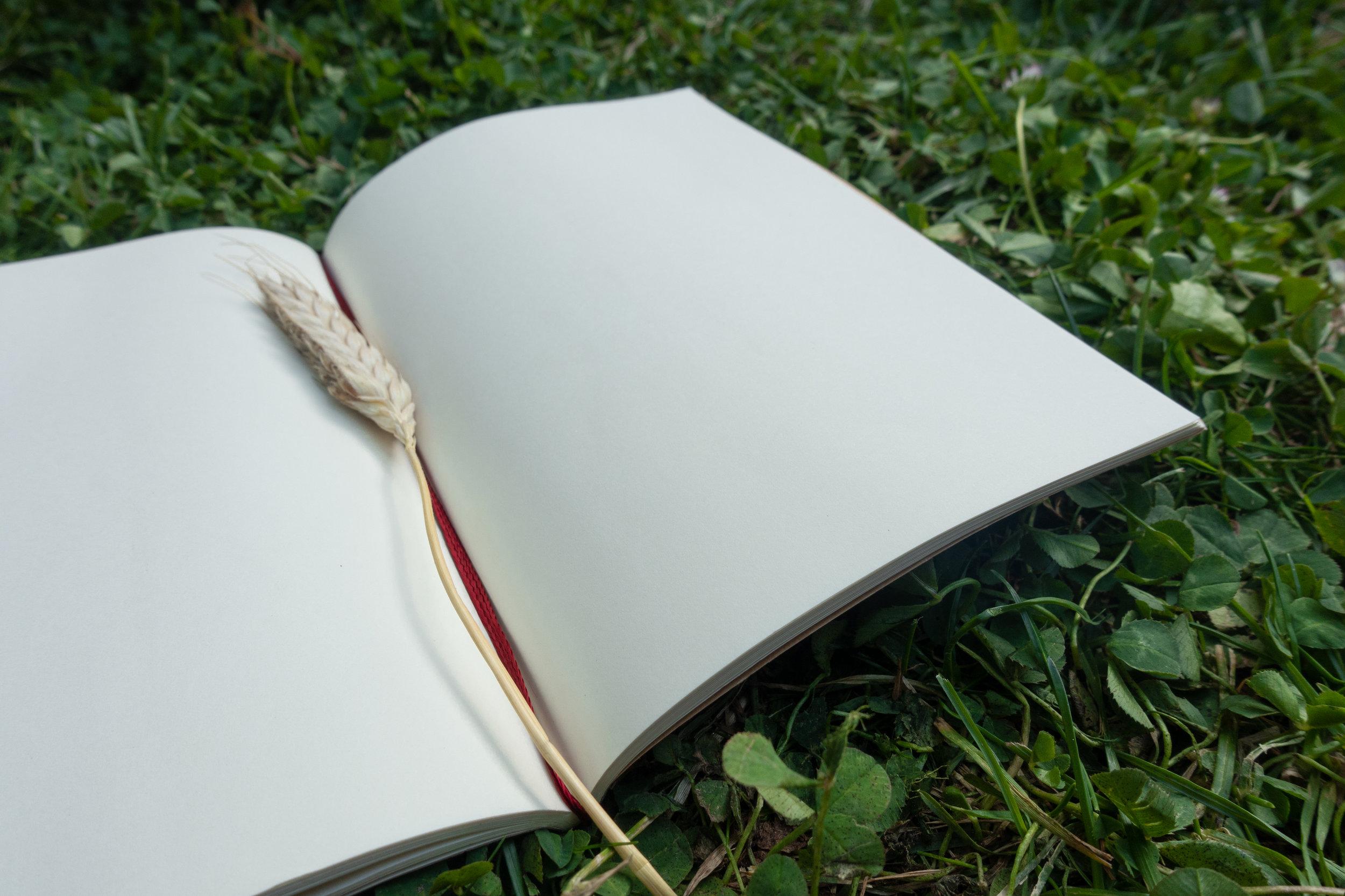 empty_sketchbook