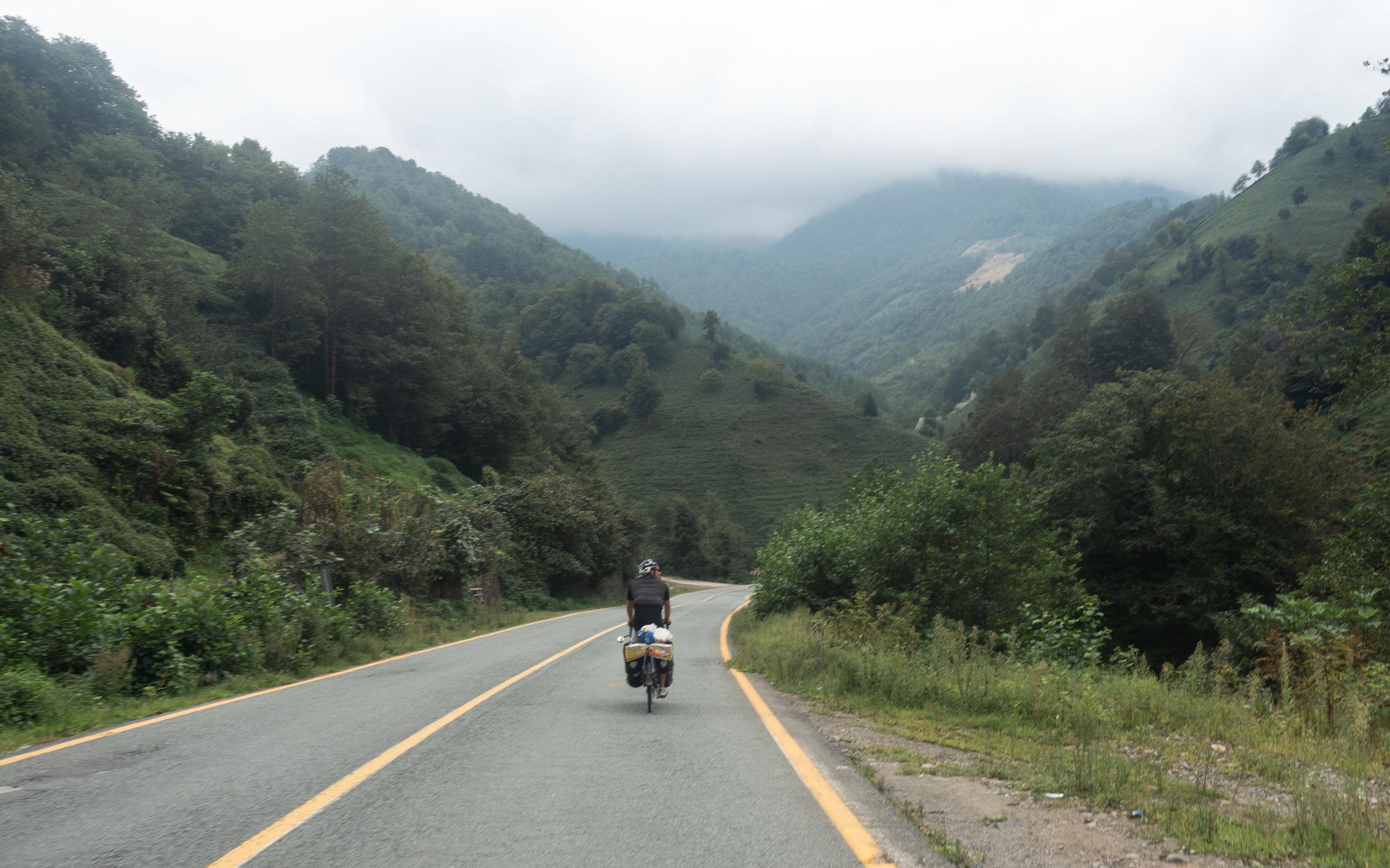 Tea plantations, Cankurtaran Pass