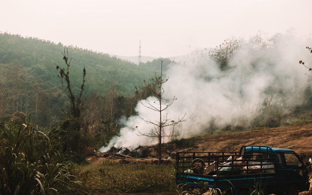 Burning back the land