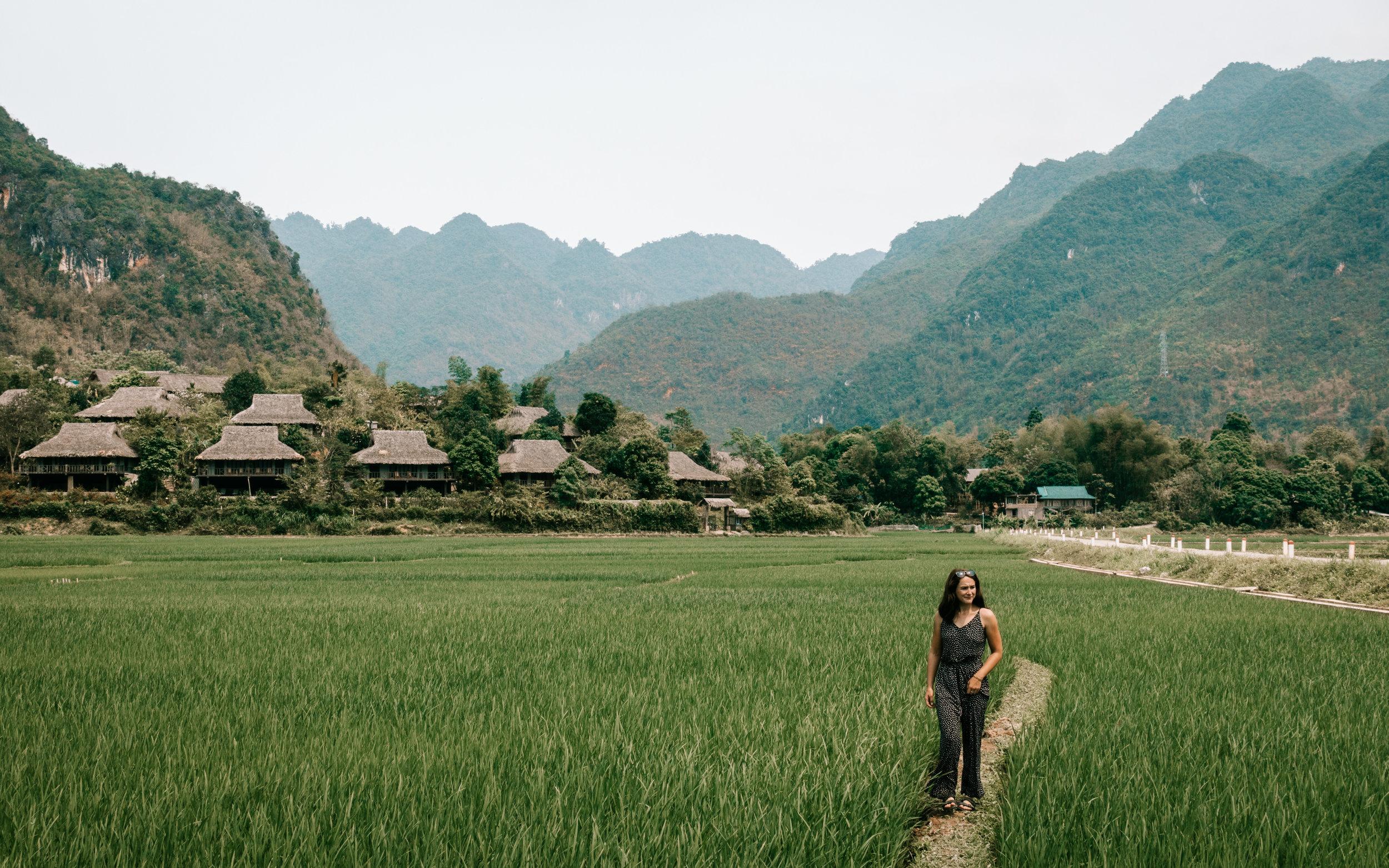 Rice paddies of Mai Chau
